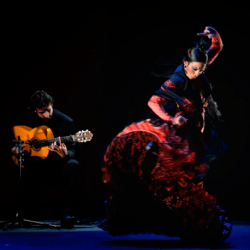12/07/2018 -TRADITIONAL FLAMENCO SHOW